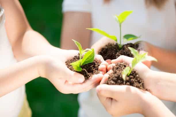 Centaras-Long-term-sustainability-goal-1.jpg