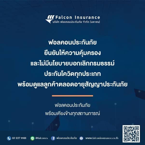 Falcon-insurance.jpg